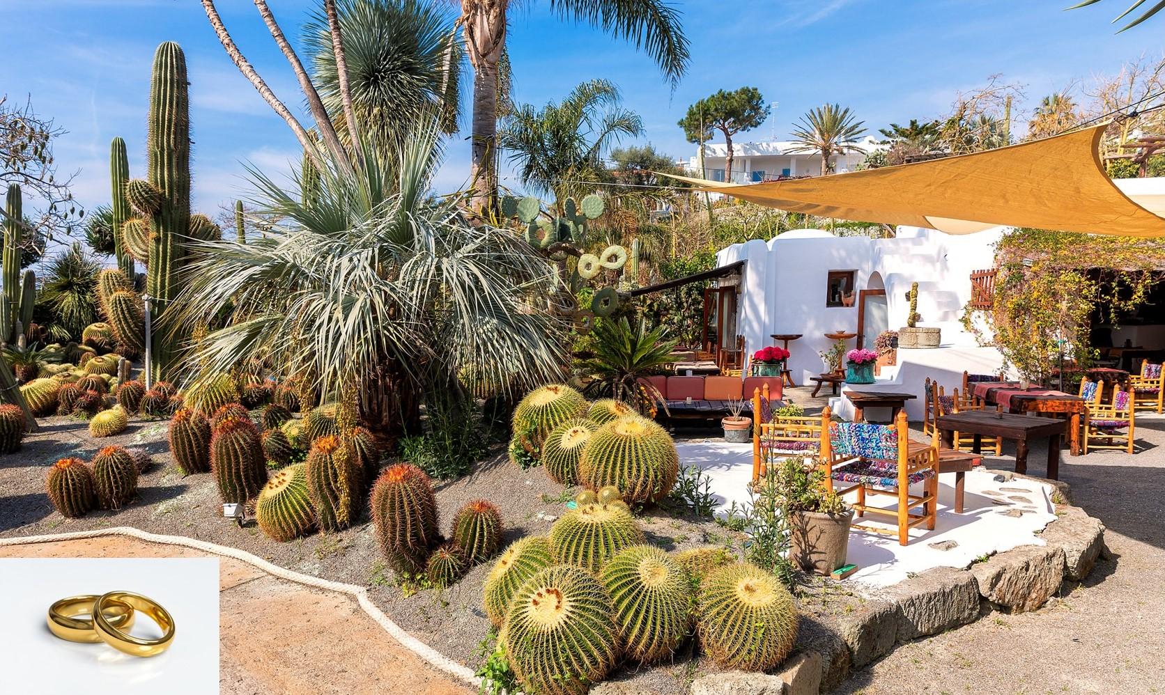lounge cafe wedding location