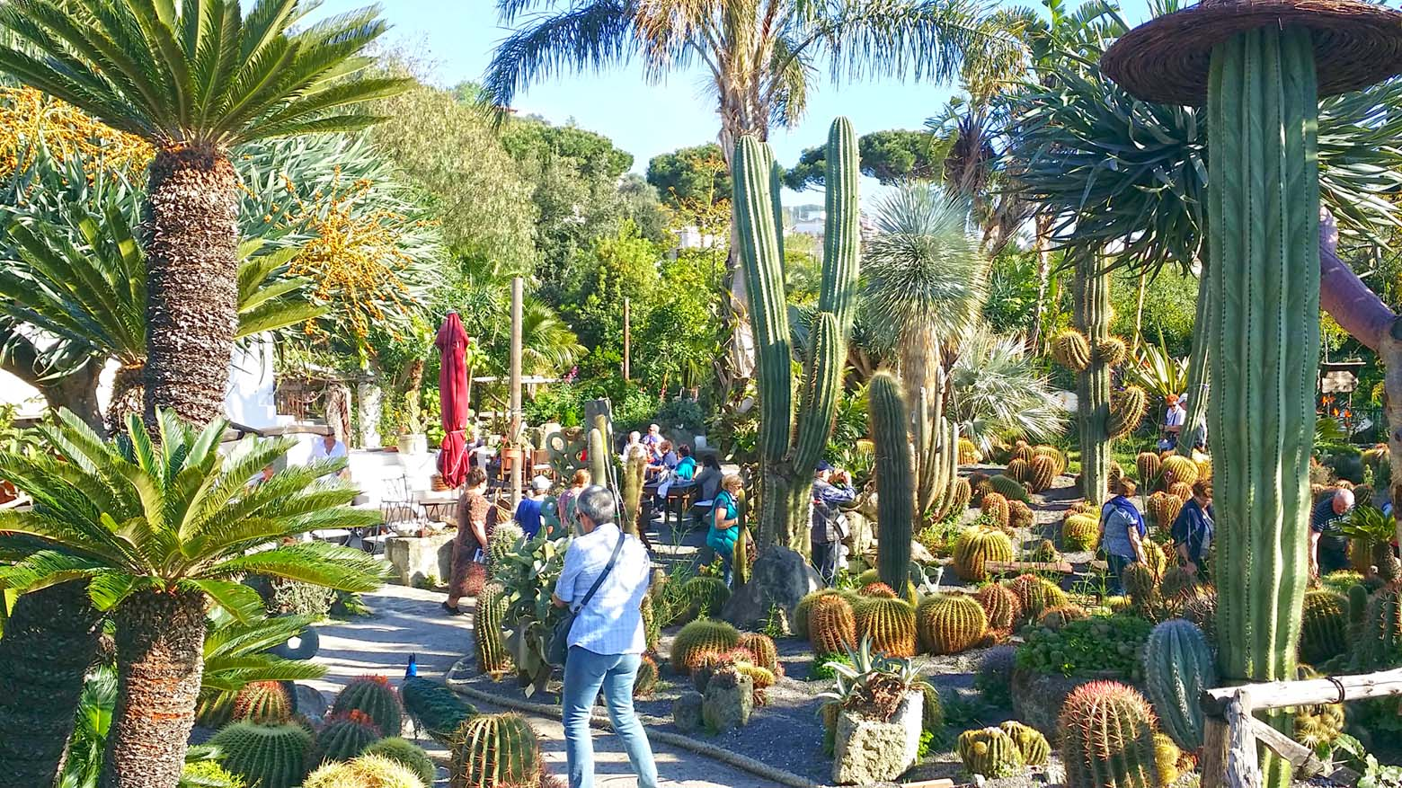 ischia, garden, botanical, BB, hotel, visit, Sight Seen